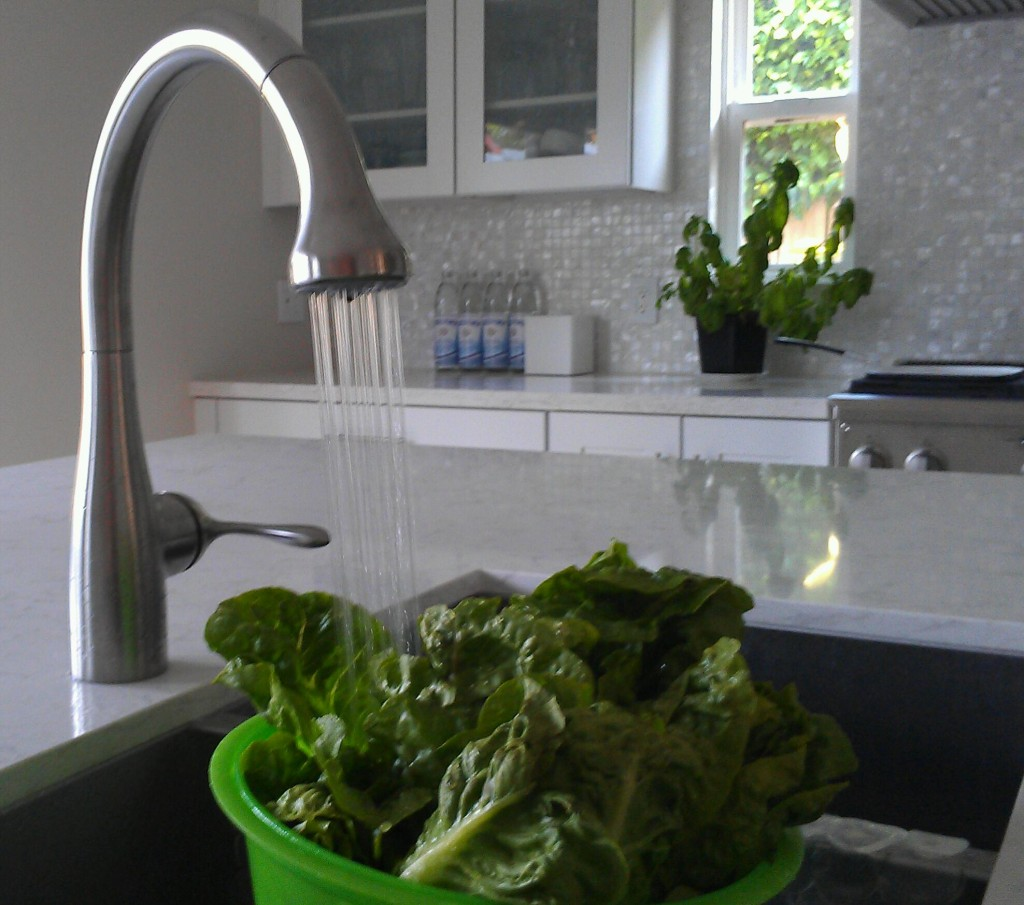 What's the best way to wash your fruits and veggies at home to effectively eliminate viruses, germs, dirt, pesticides, and more in a safe and green way? Discover 10 common methods and determine which one works best for you.