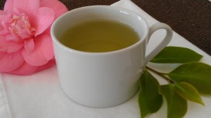 Hot tea is a good beverage to drink when you are congested.