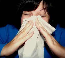 Warm and dry indoor air dries out your nasal and sinus passages putting you more at risk of getting sick this time of the year. Photo by Mcfarlandmo via Wikimedia Commons.