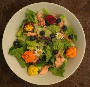 Blueberry salmon salad with tasty edible flowers and a berry vinaigrette.