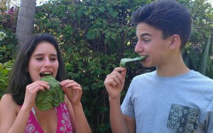 My daughter and her friend trying some beet leaf chips for the first time.