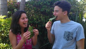 Having fun while trying the beet leaf chips!