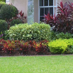 lawn mowing trimming skinnie vinnie lawn care fernandina beach fl