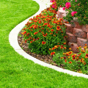 weed control flower beds