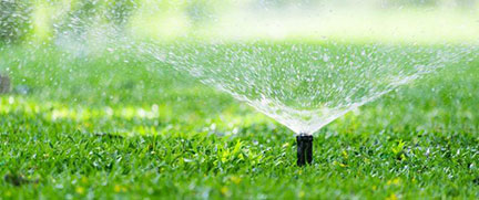 watering regulations st johns county fl