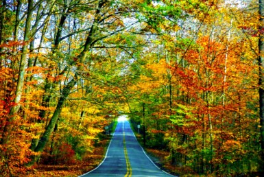 Beautiful fall view down the road in Indiana.