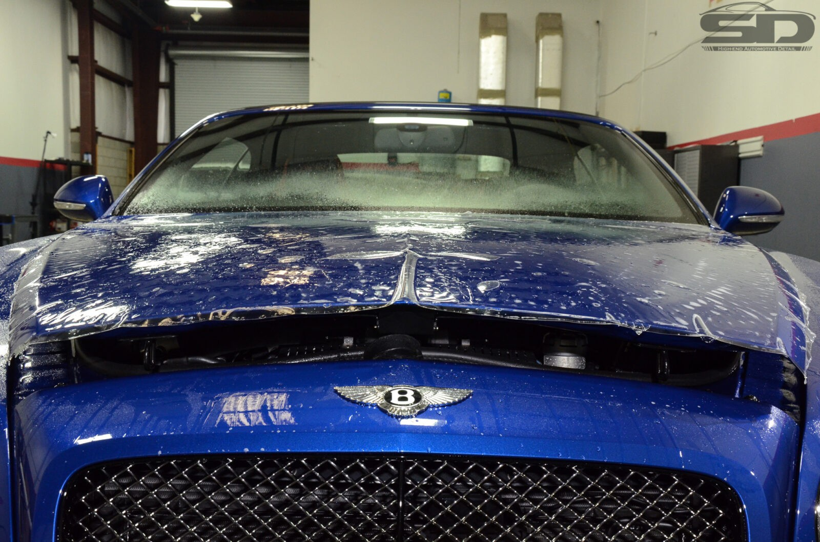 Bentley GTC, Bentley of Orlando, Bentley Orlando, Superior Detailer, Orlando, PPF, Paint Protection Film, Auto Detailing, Paint Protection Orlando, Paint Protection, Clearbra, Clear Bra, ClearBra Orlando