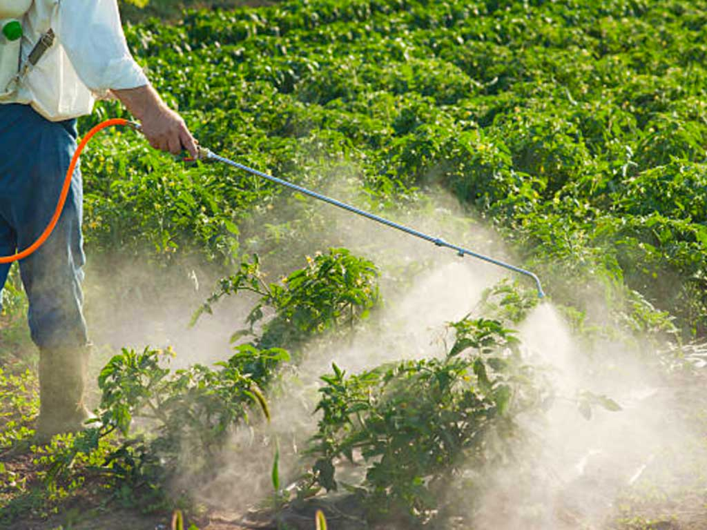 """Organic Does Not Mean """"No Pesticides"""""""