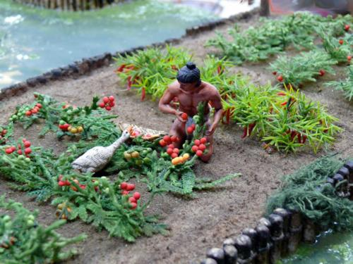 Aztec-chinampas-of-Central-America-5