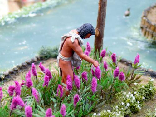 Aztec-chinampas-of-Central-America-6