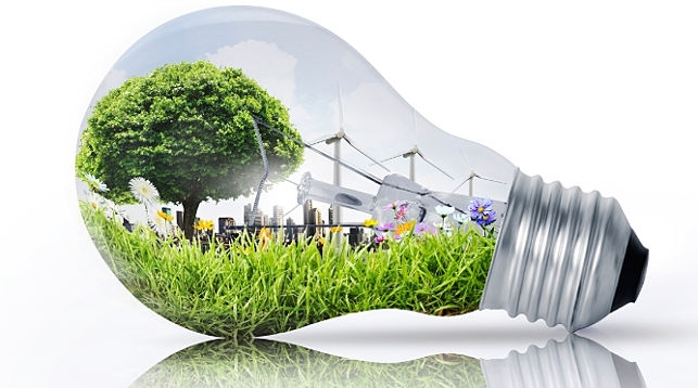 Rwanda Green Growth Week to fast-track sustainable development