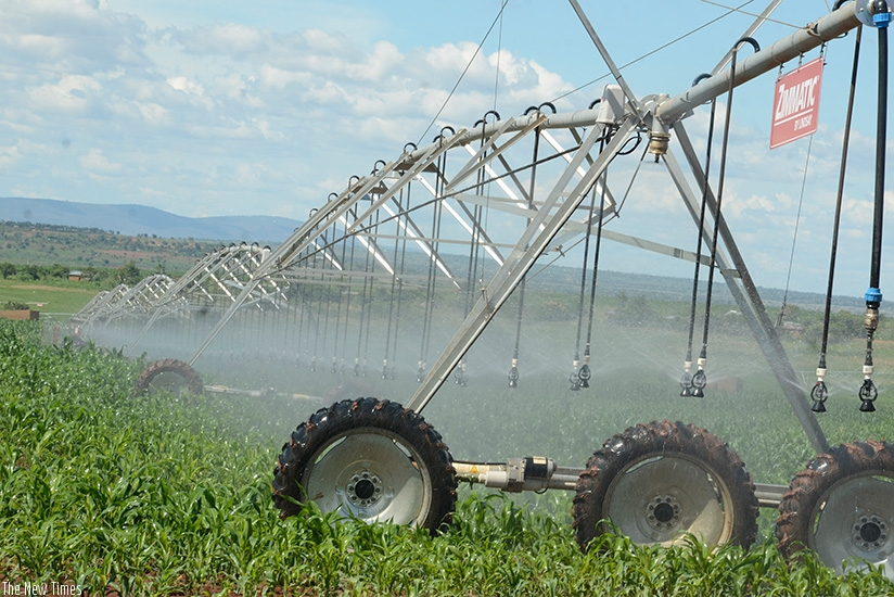 Billions earmarked for irrigation schemes, Gako beef project