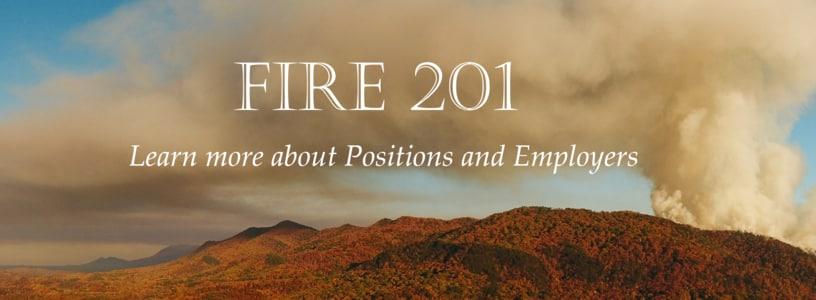 fire201