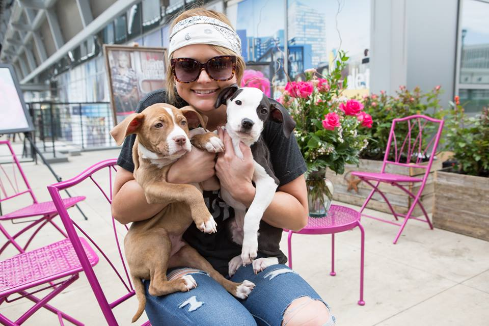 Miranda Lambert announces 8th Cause for the Paws