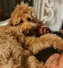 OMG! I'm in love with Randy Houser's dog's Instagram