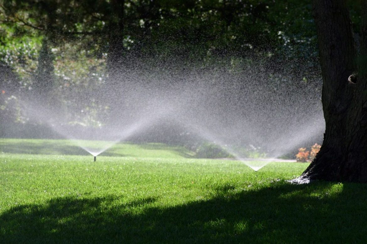 Maintaining Your Lawn in Franklin TN