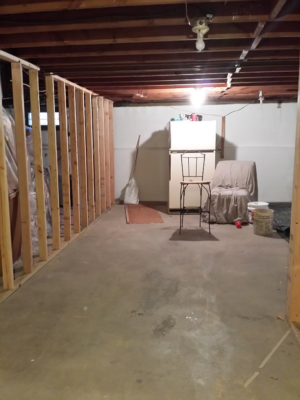 Welcome to My Basement Renovation! Part Two