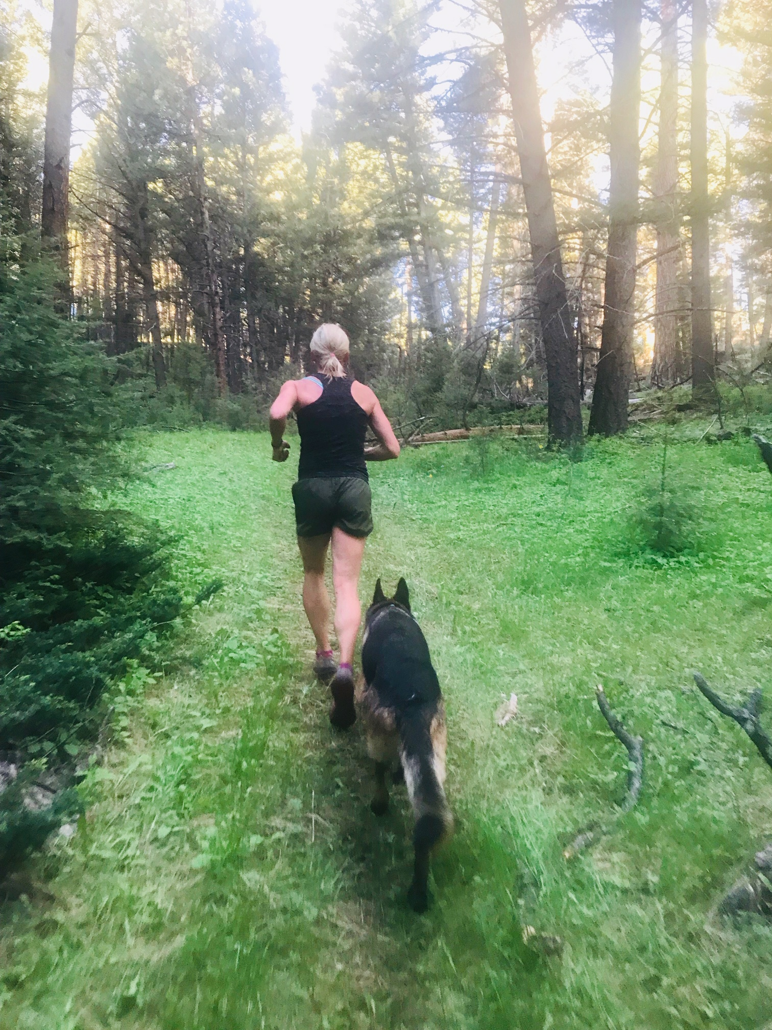 Beth's backyard trails in the Elkhorns