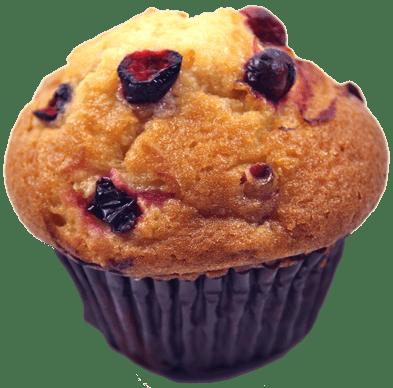 Muffin Bakery