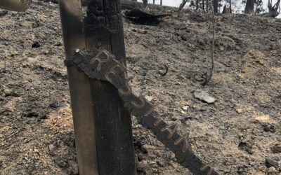 """Free Debris Removal Requires """"Right of Entry"""" to Fresno County"""