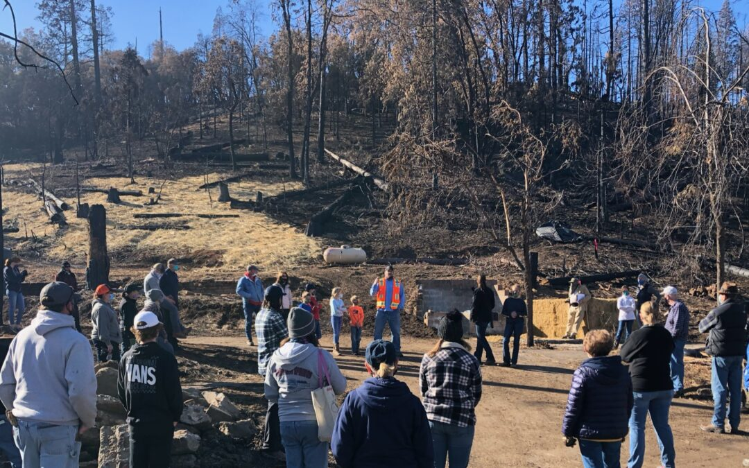 Wildfire Recovery with Community Effort