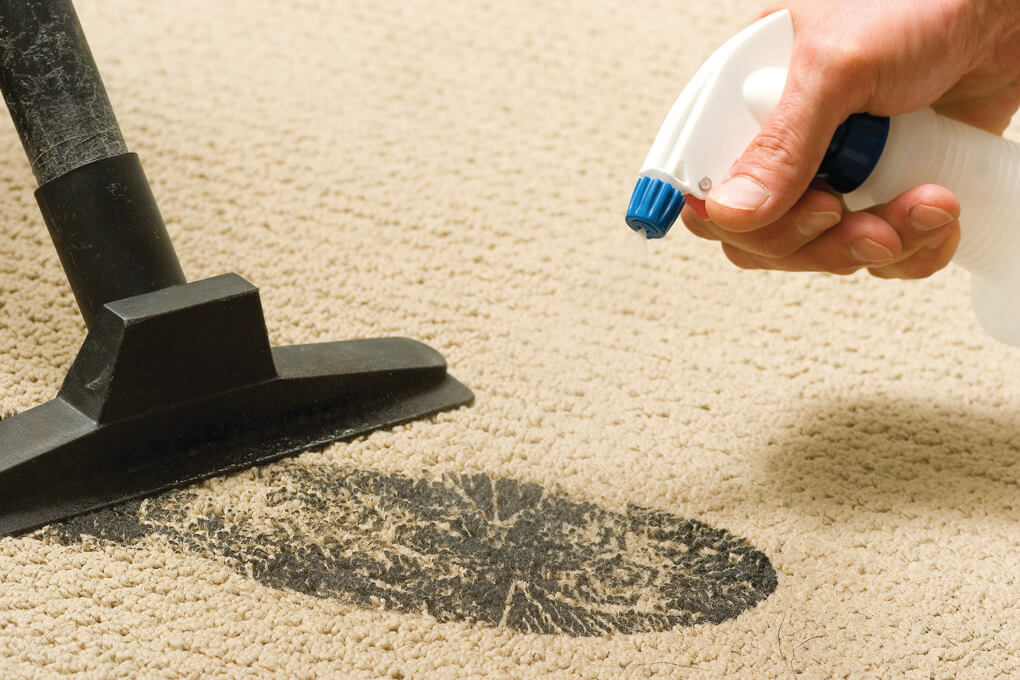 carpet cleaning in Paso Robles, CA