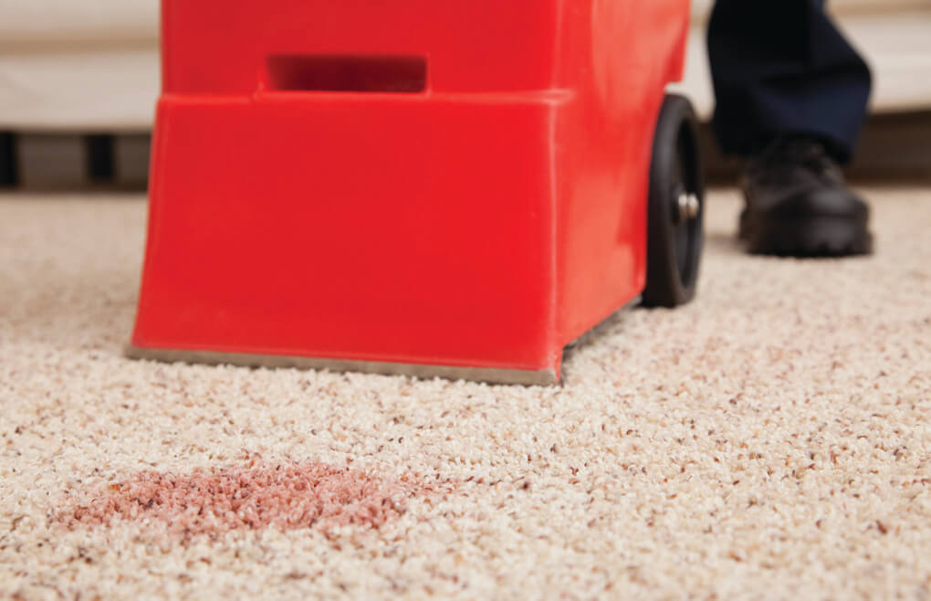 stain removal paso robles