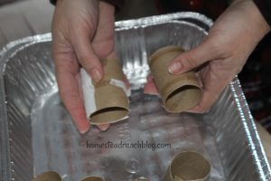 Toilet paper roll seeds
