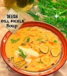 Delish Dill Pickle soup with a dollop of sour cream and fresh dill.
