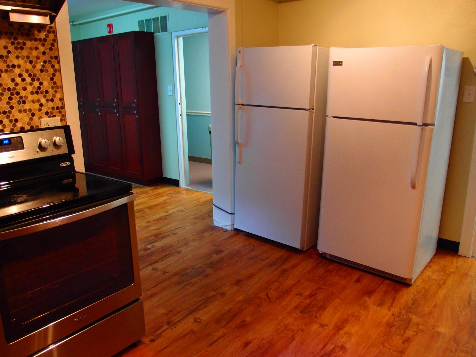 909 female kitchen fridge