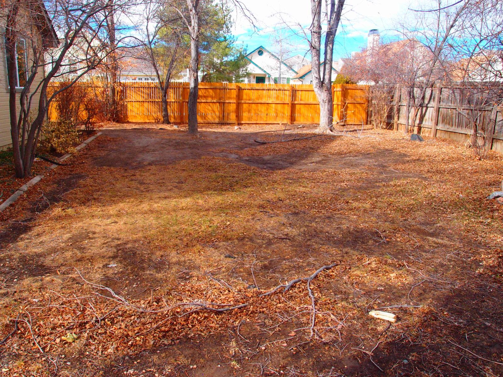 1455 fenced yard