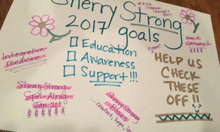 SherryStrong's 6 Goals of 2017