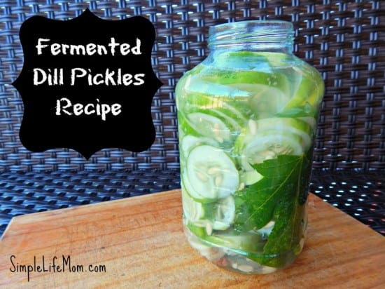 27 Last Minute DIY Gift Ideas - Fermented Dill Pickles Recipe from Simple Life Mom