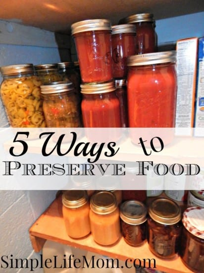 5 Ways to Preserve Food and FoodSaver Giveaway