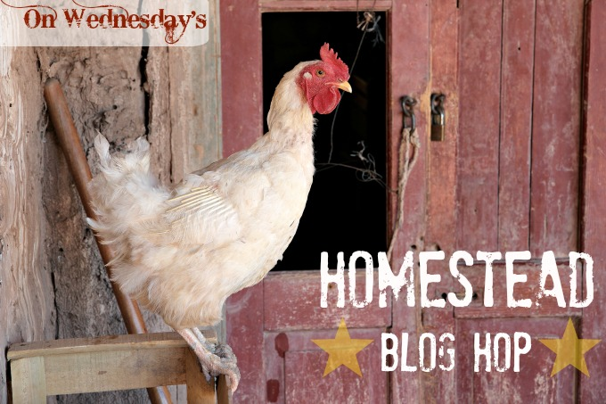 Homestead Blog Hop - every Wednesday at SimpleLifeMom (dot) com