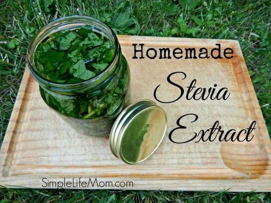 21 Handmade Christmas Gifts - Homemade Stevia Extract by Simple Life Mom