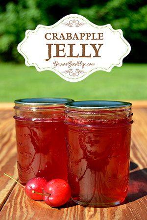12 Apple Recipes for Fall - crabapple-jelly-vert-growagoodlife