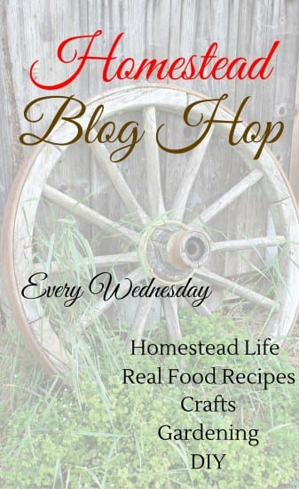 Homestead Blog Hop every Wednesday. Share your posts on gardening, DIYs, real food recipes, natural living and health at SimpleLifeMom.com