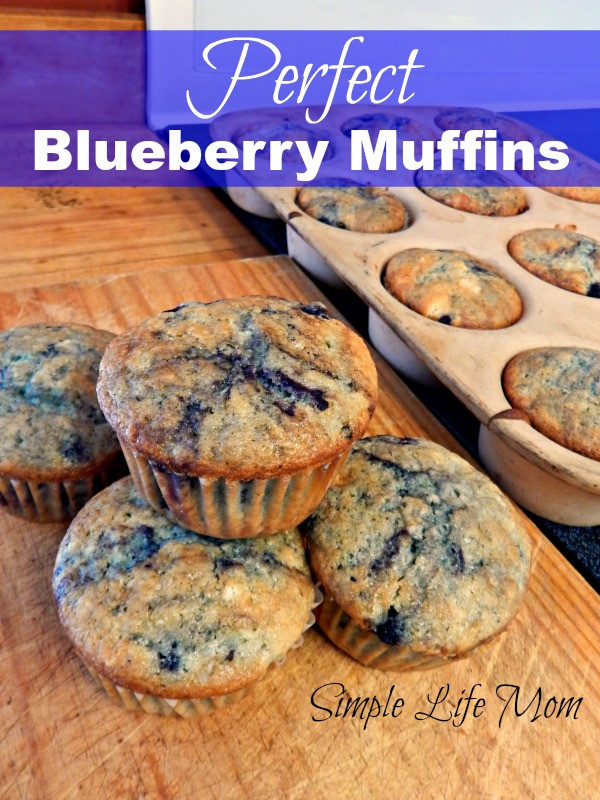 Perfect Blueberry Muffin Recipe