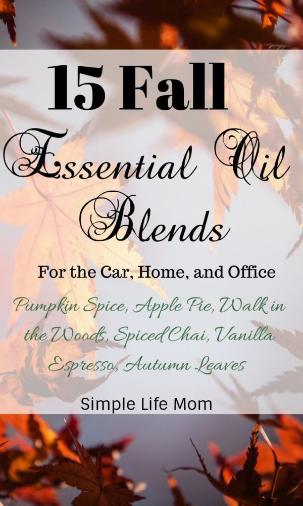 15 Fall Essential Oil Diffuser Blends For Home, Car and Office