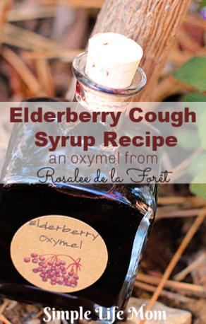 Elderberry Cough Syrup Recipe