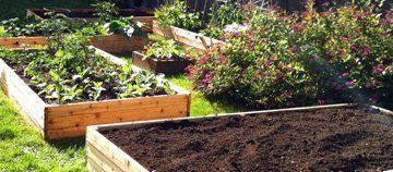 Homestead Blog Hop Feature - raised garden beds