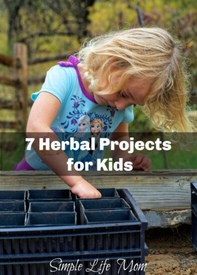 7 Herbal Projects for Kids from Simple Life Mom