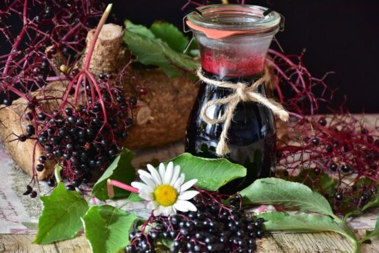 Homestead Blog Hop Feature - Elderberry Immune Syrup