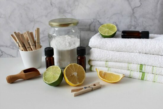 Homestead Blog Hop Feature - Green Cleaning