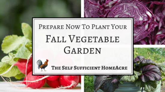 Homestead Blog Hop Feature - Prepare-Now-To-Plant-Your-Fall-Vegetables