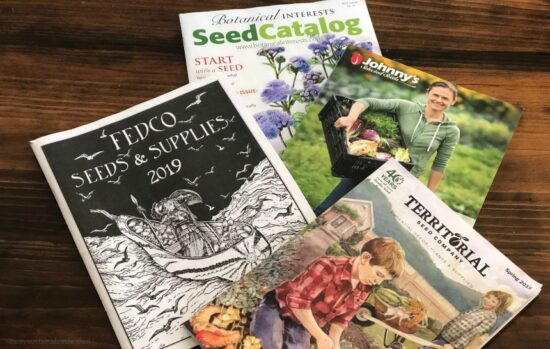 Homestead Blog Hop Feature - Its-My-Favorite-Time-Of-Year-Buying-Heirloom-Seeds