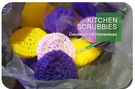 Homestead Blog Hop Feature - Kitchen Scrubbies