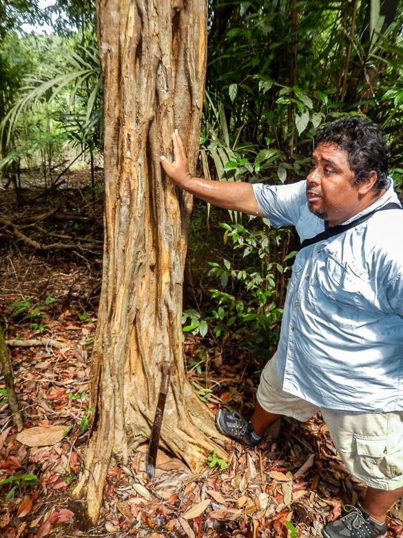 Brazilian nature guide Wayne Mann-Roth
