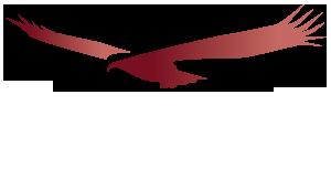 Condor Healthcare Consultants - healthcare consulting firm